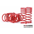 "FIAT 500 Lowering Springs by MADNESS -1.4"" Drop - V1"