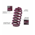 FIAT 500 Lowering Springs - Vogtland - North American Model